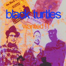 music band black turtles album wanted