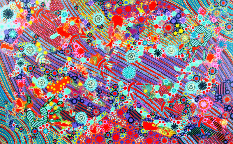 emu-dreaming-014-slider-e1512600077887